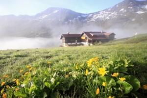 Schwarzwalderhütte