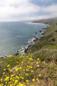 De kust ten noorden van San Francisco