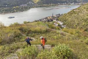 De Rijn bij Lorch (Rheinsteig)